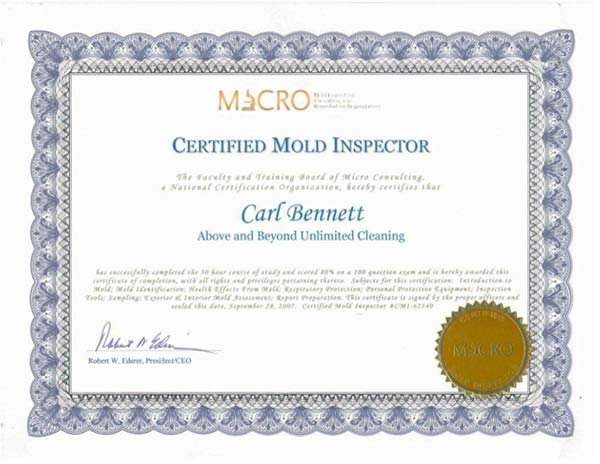Mold Removal Pa Certified Mold Inspection Services In