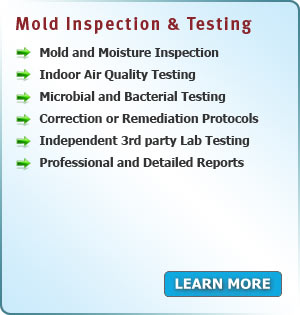 Services Area PA - Mold Inspection and Testing