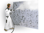 Mold Remediation Pennsylvania